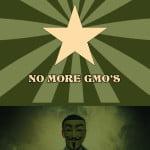 long GMO